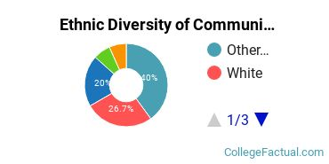 Ethnic Diversity of Communications Technologies & Support Majors at Academy of Art University