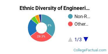 Ethnic Diversity of Engineering Technologies Majors at Academy of Art University