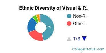 Ethnic Diversity of Visual & Performing Arts Majors at Academy of Art University