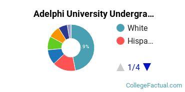 Adelphi Undergraduate Racial-Ethnic Diversity Pie Chart