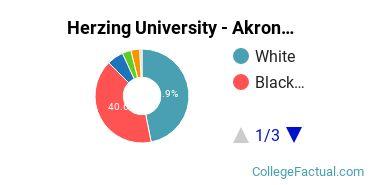 Herzing Akron Undergraduate Racial-Ethnic Diversity Pie Chart
