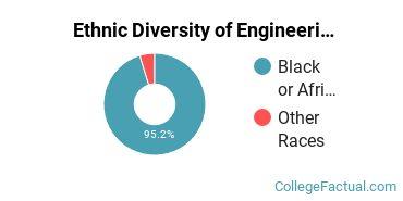 Ethnic Diversity of Engineering Technologies Majors at Alabama A & M University