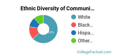Ethnic Diversity of Communication & Journalism Majors at Albion College