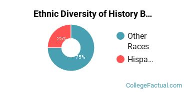 Ethnic Diversity of History Majors at American International College
