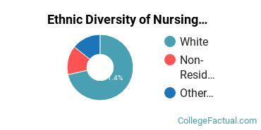 Ethnic Diversity of Nursing Majors at Anderson University Indiana