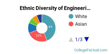 Ethnic Diversity of Engineering Majors at Andrews University