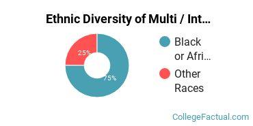 Ethnic Diversity of Multi / Interdisciplinary Studies Majors at Andrews University