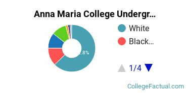 Anna Maria Undergraduate Racial-Ethnic Diversity Pie Chart