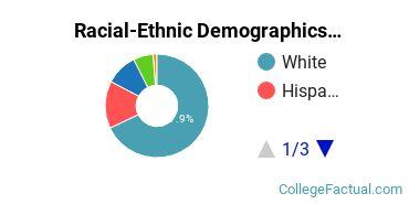Anna Maria College Graduate Students Racial-Ethnic Diversity Pie Chart