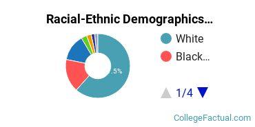 Anna Maria College Undergraduate Racial-Ethnic Diversity Pie Chart