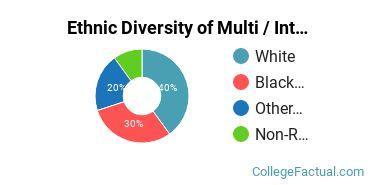 Ethnic Diversity of Multi / Interdisciplinary Studies Majors at Arcadia University