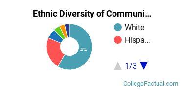 Ethnic Diversity of Communication & Journalism Majors at Arizona State University - Tempe