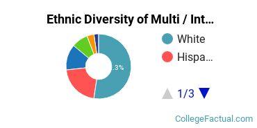 Ethnic Diversity of Multi / Interdisciplinary Studies Majors at Arizona State University - Tempe