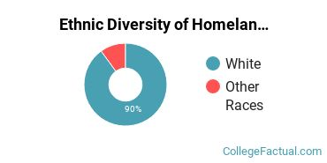 Ethnic Diversity of Homeland Security, Law Enforcement & Firefighting Majors at Arkansas State University - Main Campus
