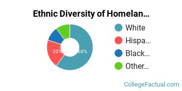 Ethnic Diversity of Homeland Security, Law Enforcement & Firefighting Majors at Asheville-Buncombe Technical Community College
