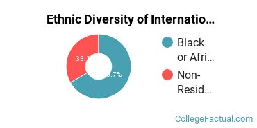 Ethnic Diversity of International Business Majors at Auburn University at Montgomery