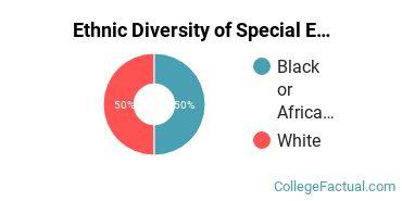 Ethnic Diversity of Special Education Majors at Auburn University at Montgomery