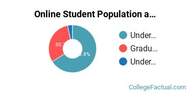 Online Student Population at Augsburg University