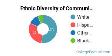 Ethnic Diversity of Communication & Journalism Majors at Aurora University
