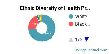 Ethnic Diversity of Health Professions Majors at Averett University