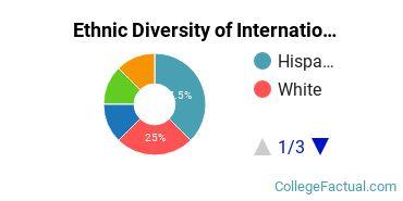 Ethnic Diversity of International Business Majors at Azusa Pacific University