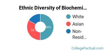 Ethnic Diversity of Biochemistry, Biophysics & Molecular Biology Majors at Barnard College
