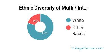 Ethnic Diversity of Multi / Interdisciplinary Studies Majors at Barton College