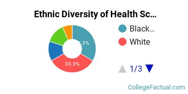 Ethnic Diversity of Health Sciences & Services Majors at Bay State College