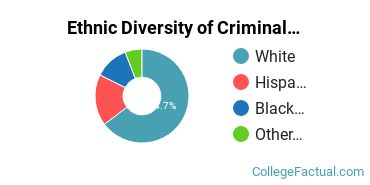 Ethnic Diversity of Criminal Justice & Corrections Majors at Bay State College