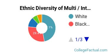 Ethnic Diversity of Multi / Interdisciplinary Studies Majors at Belhaven University