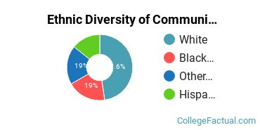 Ethnic Diversity of Communication & Journalism Majors at Bellevue University