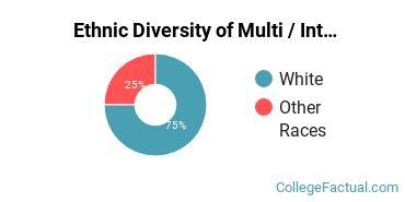 Ethnic Diversity of Multi / Interdisciplinary Studies Majors at Bellevue University