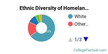 Ethnic Diversity of Homeland Security, Law Enforcement & Firefighting Majors at Bellevue University