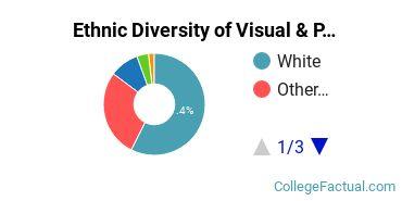 Ethnic Diversity of Visual & Performing Arts Majors at Bellevue University