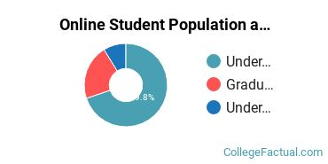 Online Student Population at Bellin College