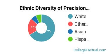 Ethnic Diversity of Precision Production Majors at Bellingham Technical College