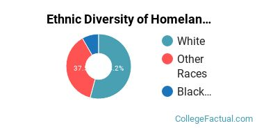 Ethnic Diversity of Homeland Security, Law Enforcement & Firefighting Majors at Belmont Abbey College