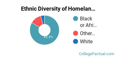 Ethnic Diversity of Homeland Security, Law Enforcement & Firefighting Majors at Benedict College