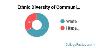 Ethnic Diversity of Communication & Journalism Majors at Bentley University