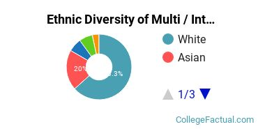 Ethnic Diversity of Multi / Interdisciplinary Studies Majors at Bentley University