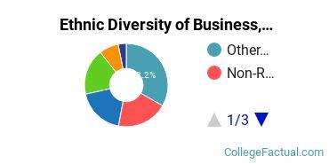 Ethnic Diversity of Business, Management & Marketing Majors at Berkeley College - New York