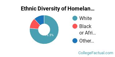 Ethnic Diversity of Homeland Security, Law Enforcement & Firefighting Majors at Berkshire Community College