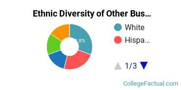 Ethnic Diversity of Other Business, Management & Marketing Majors at Bethany College Kansas