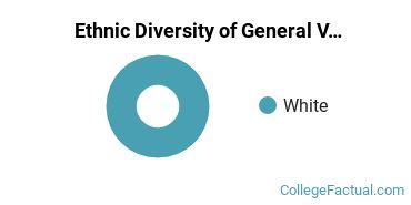 Ethnic Diversity of General Visual & Performing Arts Majors at Bethany College West Virginia