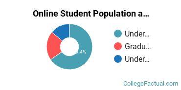 Online Student Population at Bethel University