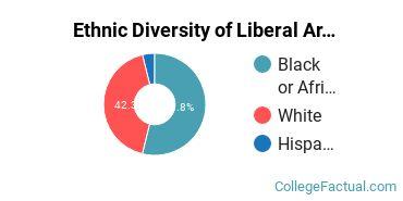 Ethnic Diversity of Liberal Arts / Sciences & Humanities Majors at Bethel University