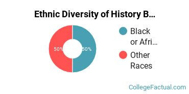 Ethnic Diversity of History Majors at Bloomfield College