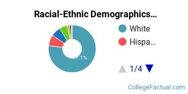 Bloomsburg University of Pennsylvania Undergraduate Racial-Ethnic Diversity Pie Chart