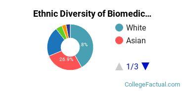 Ethnic Diversity of Biomedical Engineering Majors at Boston University