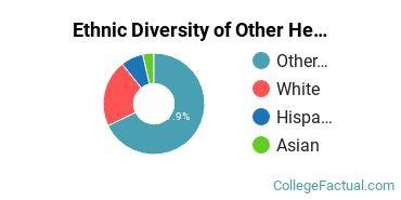 Ethnic Diversity of Other Health Professions Majors at Boston University